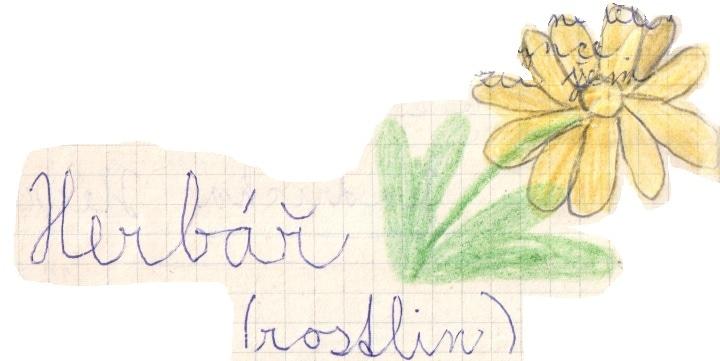 Deník I. – 21 – Zakládám herbář