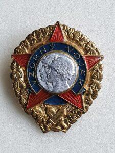 Odznak Vzorný voják